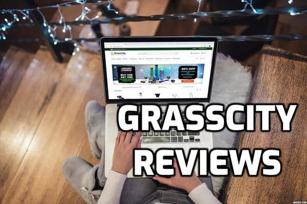 Grasscity Review
