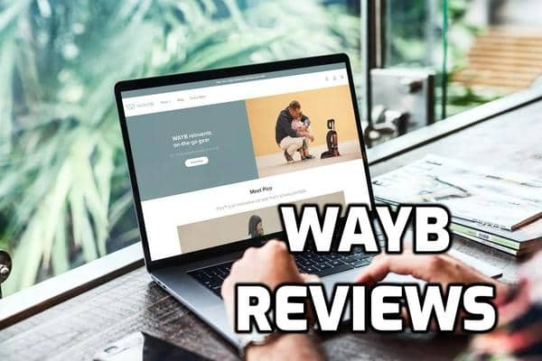 Wayb Review